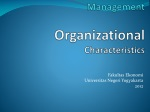 Strategic Human Resources Management Organizational  Characteristics