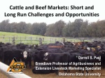 Cattle and Beef Markets: Short and Long Run Challenges and Opportunities