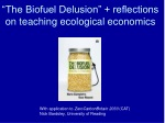"""""""The Biofuel Delusion"""" + reflections on teaching ecological economics"""