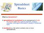 Spreadsheet Basics