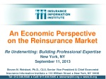 An Economic Perspective on the Reinsurance Market