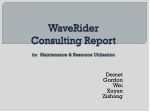 WaveRider Consulting Report for Maintenance & Resource Utilisation