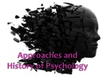 Approaches and History of Psychology