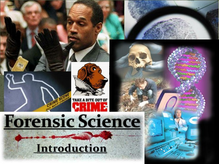 forensic science n.
