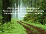 Clinical Issues in the Treatment of Adolescents Who Have Engaged in Sexually Abusive Behavior and the DJJ Treatment Mode