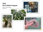 2013 GK-12 Belize Program