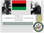 African  American Political Voices of the 1920s