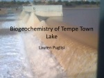 Biogeochemistry of Tempe Town Lake