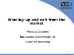 Winding-up and exit from the market
