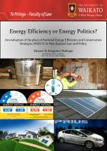 Energy Efficiency or Energy Politics?