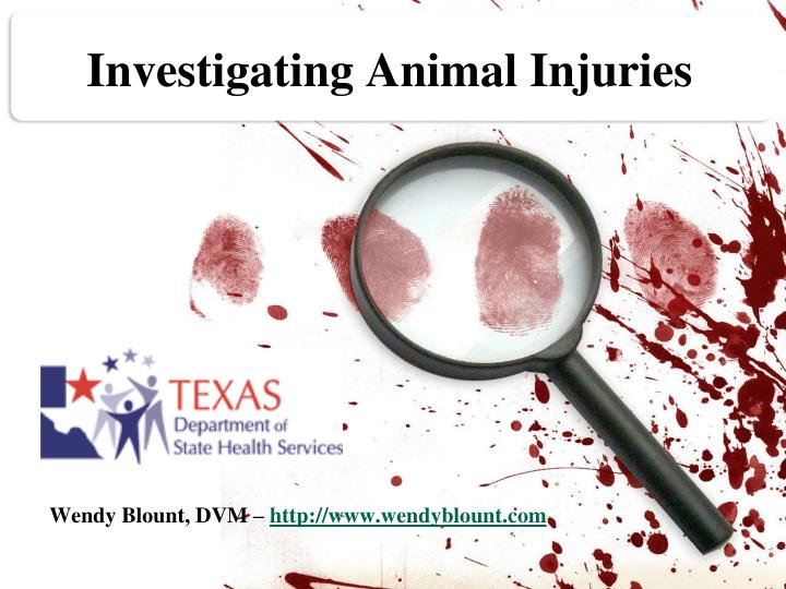investigating animal injuries n.