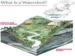 What is a watershed? It is the area of  land and waterways  that  drain  to a water body.