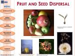 Fruit and Seed Dispersal