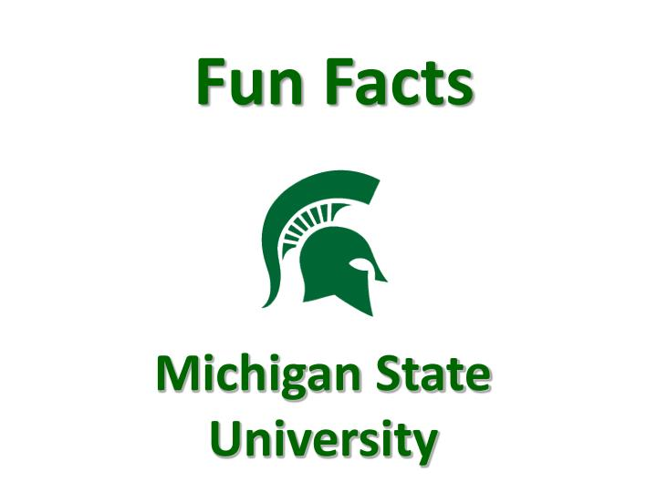 michigan state university n.