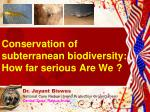 Conservation of  subterranean biodiversity:  How far serious Are We ?