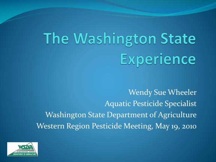 the washington state experience n.