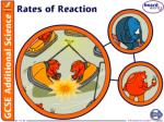 What does rate of reaction mean?