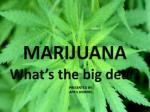 MARIJUANA What's the big deal?