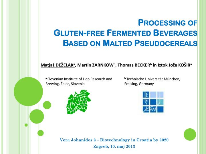 processing of gluten free fermented beverages based on malted pseudocereals n.