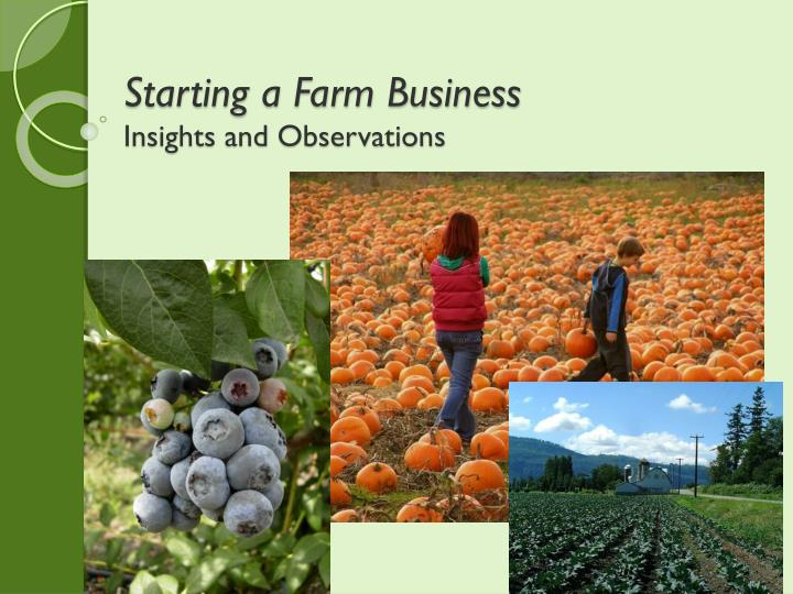 starting a farm business insights and observations n.