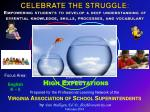 Prepared for the Professional Learning Network of the Virginia Association of School Superintendents by Dan Mulligan, E