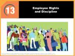 Employee Rights and Discipline