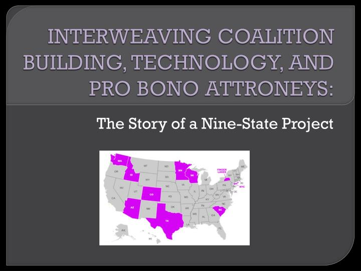 interweaving coalition building technology and pro bono attroneys n.