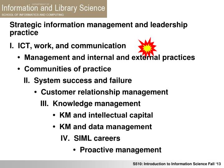 strategic information management and leadership practice n.