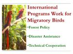 Forest Policy Disaster Assistance Technical Cooperation