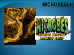 MICROBES!!!!