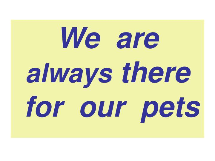we are always there for our pets n.