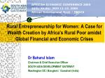 Rural Entrepreneurship for Women: A Case for Wealth Creation by Africa's Rural Poor amidst Global Financial and Economic