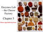 Enzymes Lab – the Cheese Factory Chapter 5