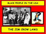 BLACK PEOPLE IN THE USA