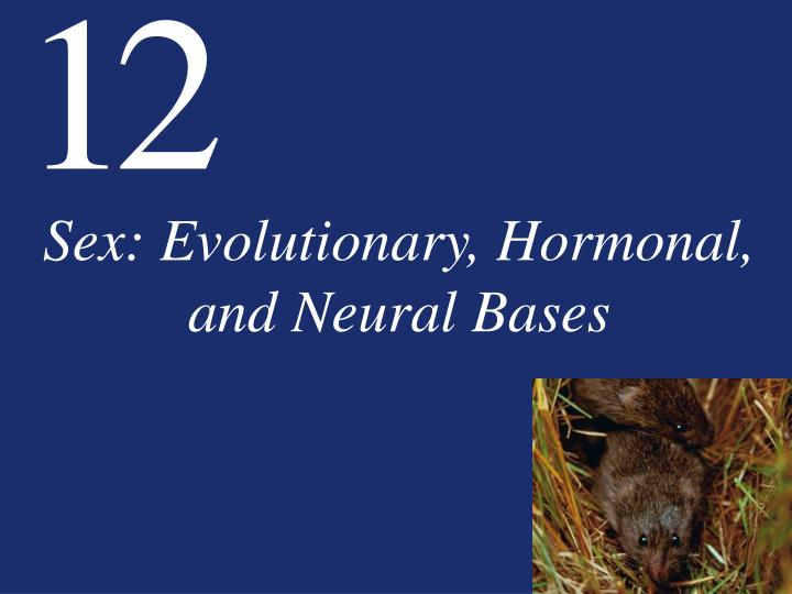 sex evolutionary hormonal and neural bases n.