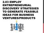 2.03 Employ entrepreneurial discovery strategies to generate feasible ideas for business ventures/products