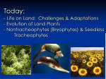 Today: - Life on Land: Challenges & Adaptations - Evolution of Land Plants - Nontracheophytes (Bryophytes) &