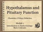 Hypothalamus and Pituitary Function