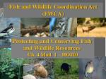 Fish and Wildlife Coordination Act (FWCA)