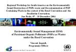 Environmentally Sound Management (ESM) of Persistant Organic Pollutants (POPs) as Wastes  under the Basel Convention Vin