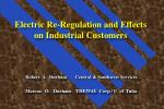 Electric Re-Regulation and Effects on Industrial Customers