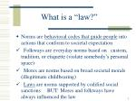 """What is a """"law?"""""""