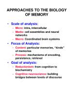APPROACHES TO THE BIOLOGY OF MEMORY