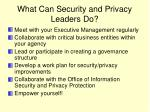What Can Security and Privacy Leaders Do?
