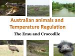 The Emu and Crocodile