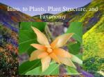Intro. to Plants, Plant Structure, and Taxonomy
