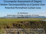 Vulnerability of Permafrost Carbon