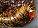 Students verses the  centipede
