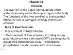 Chapter 15 The Liver