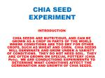 CHIA SEED EXPERIMENT
